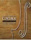 calculus single variable 4th edition solution manual